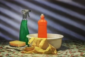 preventative pest control - cleaning up